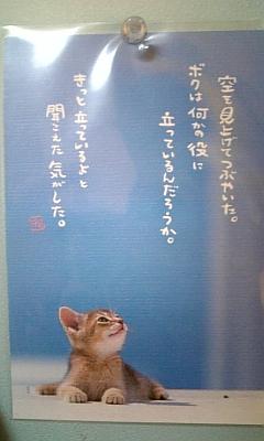 虹(^-^)