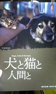 犬と猫と人間と