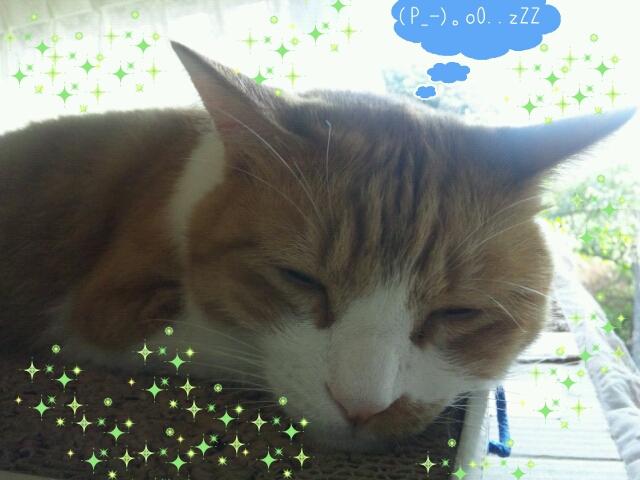 Rakugaki_20111023_0002