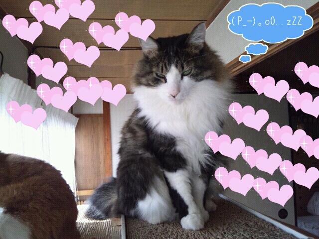 Rakugaki_20111122_0002