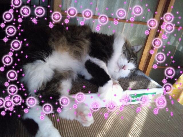 Rakugaki_20111230_0017