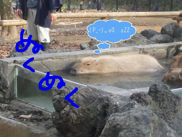 Rakugaki_20120105_0022