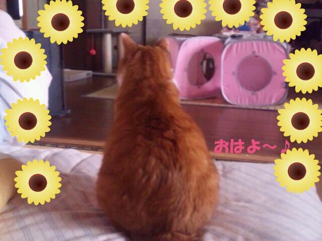 Rakugaki_20120216_0031