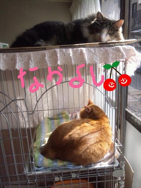 Rakugaki_20120228_0040