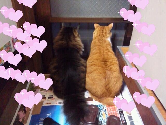 Rakugaki_20120430_0066