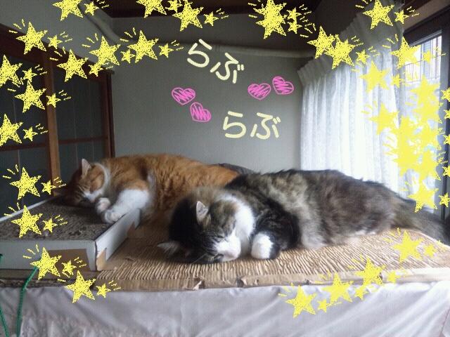 Rakugaki_20120724_0020